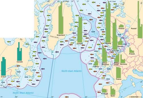 Maps North Atlantic Ocean Sea Fishing Diercke International - Ocean sea map