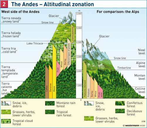 Diercke Karte The Andes – Altitudinal zonation