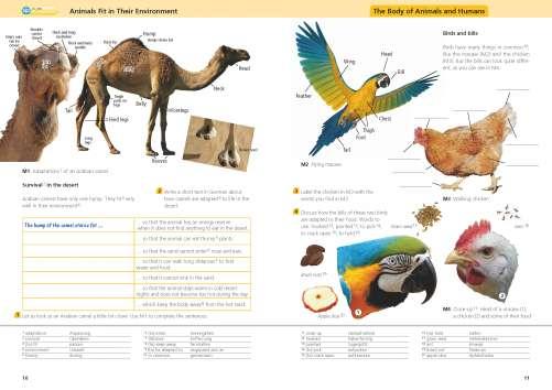 Diercke Karte Animals Fit in Their Environment