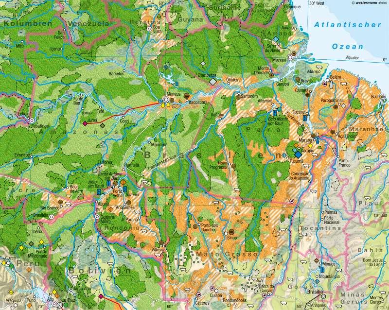 Amazonien | Eingriffe in den tropischen Regenwald | Tropischer Regenwald | Karte 166/1