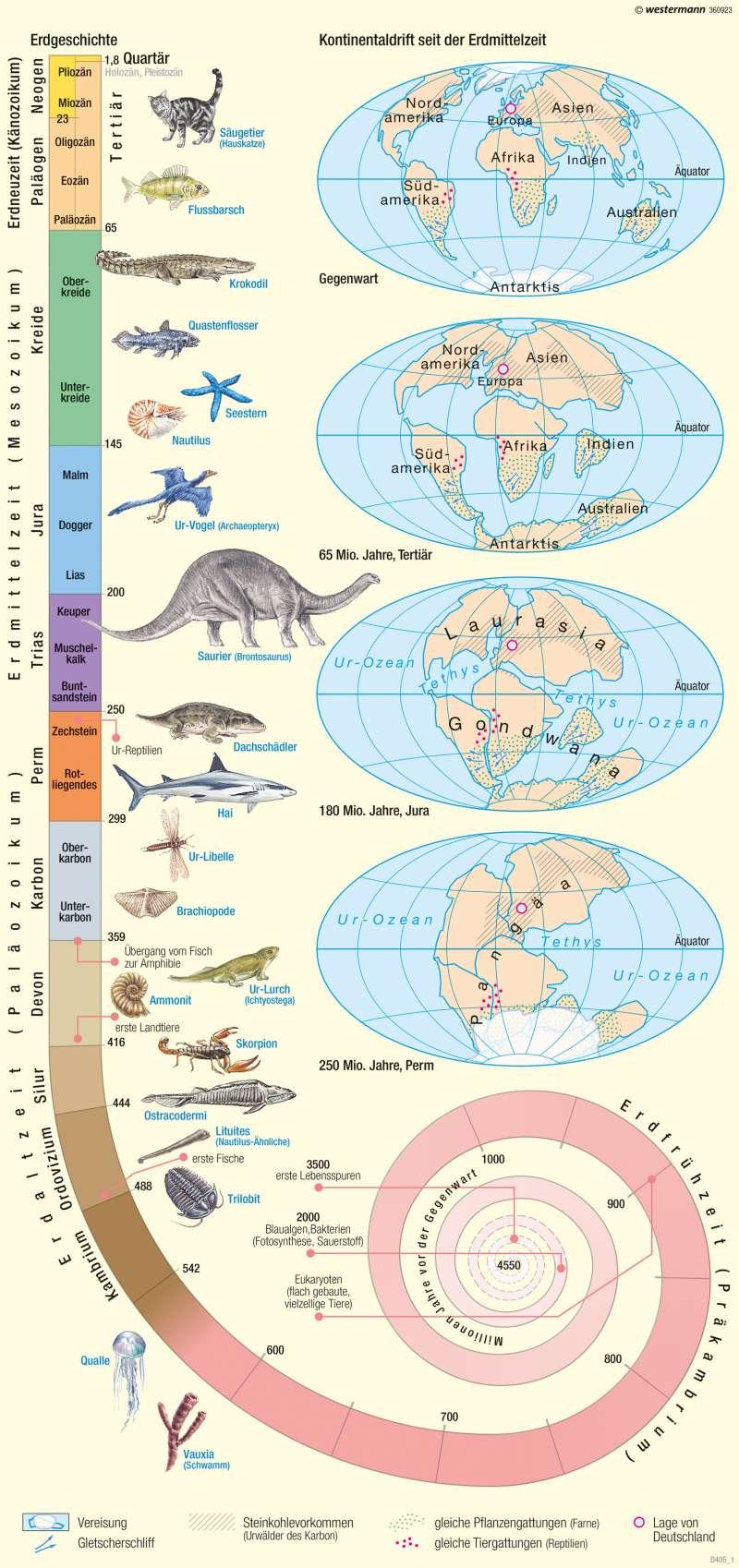 | Erdgeschichte und Kontinentaldrift | Erde - Erdgeschichte, Tektonik, Vulkanismus | Karte 242/1
