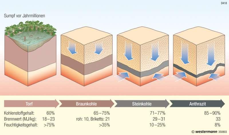 Entstehung von Kohle (Inkohlungsreihe) |  | Rheinisches Braunkohlenrevier | Karte 19/3