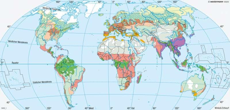 Erde | Agrarregionen | Erde - Reale Vegetation und Landnutzung | Karte 261/3