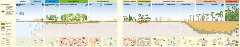 Geozonen      Ökozonale Gliederung   Karte 178/2