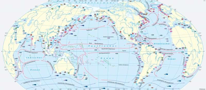 Weltmeere | Gefährdete Nahrungsquelle | Weltmeere als Nahrungsquelle | Karte 22/1