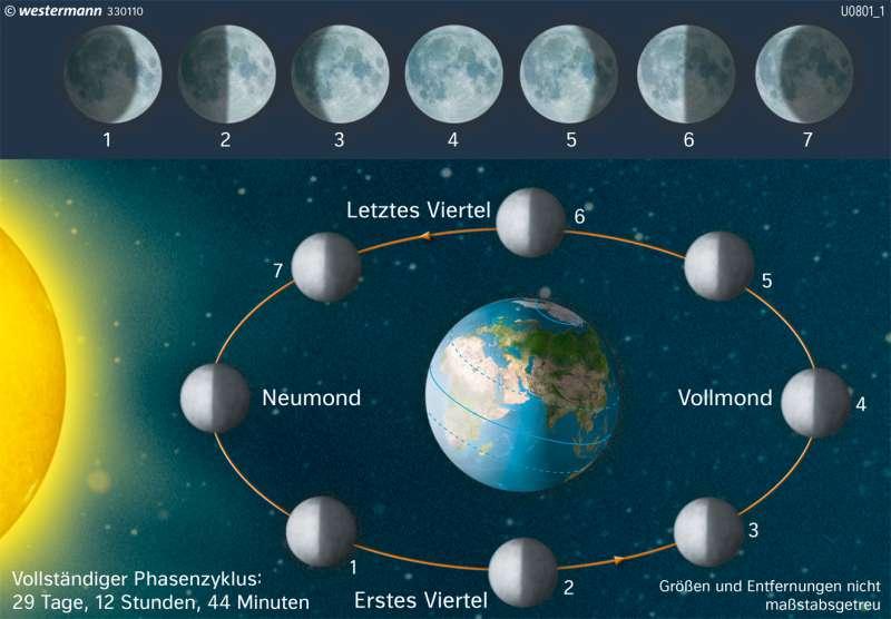 | Die Mondphasen | Die Erde im Weltall | Karte 6/5