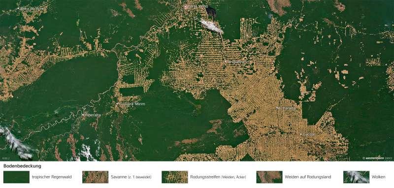 Rondônia (Brasilien) | Rodungsstrukturen | Amazonien - Tropischer Regenwald | Karte 232/2