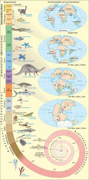Erdgeschichte und Kontinentaldrift |  | Erdgeschichte/Tektonik/Vulkanismus | Karte 224/1
