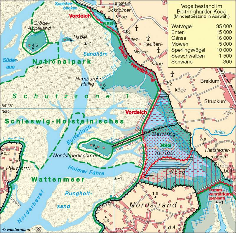 Nordstrander Bucht | Küstenschutz und ökologische Folgen | Küstenlandschaften/Küstenformen | Karte 24/2