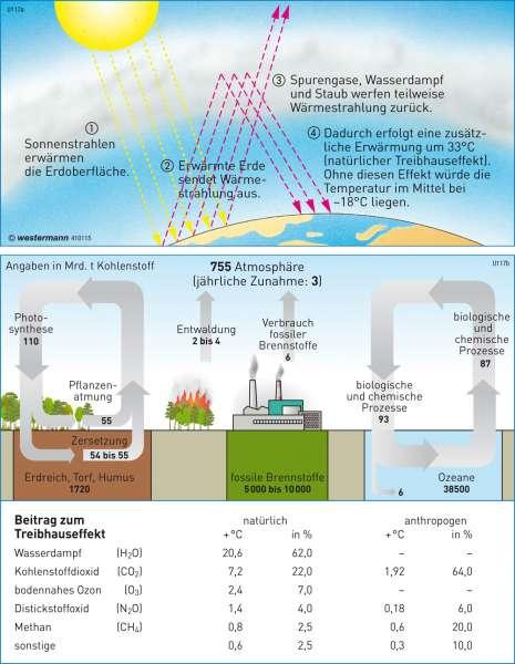 Treibhauseffekt und Kohlenstoffkreislauf      Erde - Umwelt   Karte 39/4