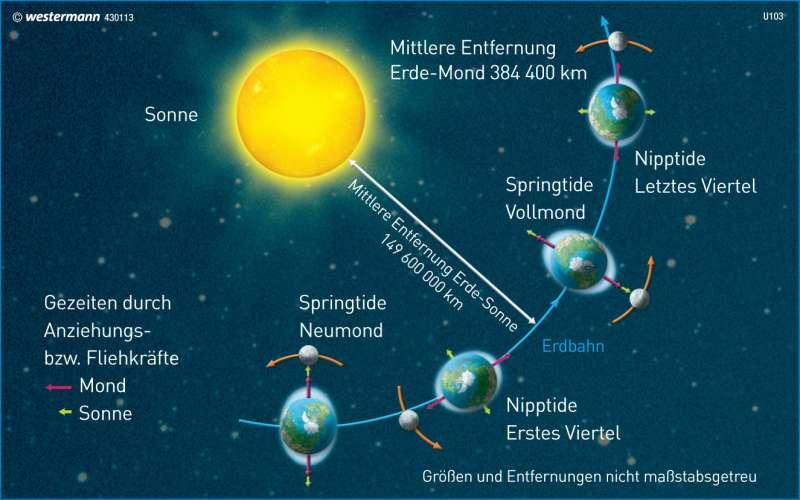 Entstehung der Gezeiten |  | Deutschland - Umwelt | Karte 82/2