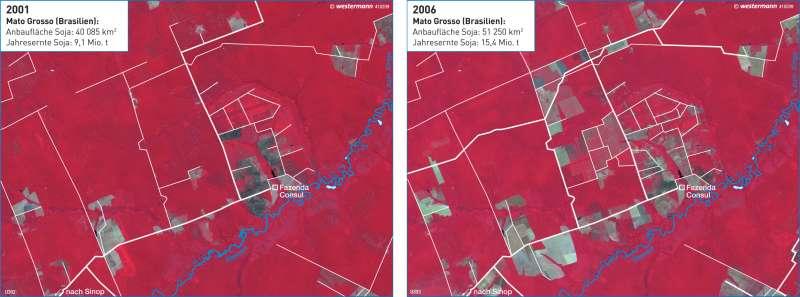Mato Grosso   Sojaanbauflächen an Erschließungsstraßen   Südamerika - Regenwald   Karte 217/4