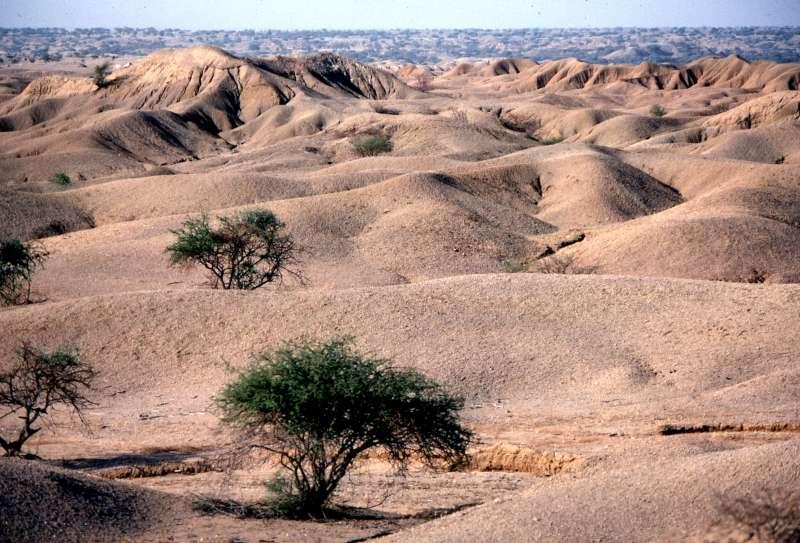 Diercke Weltatlas - Kartenansicht - Desertifikation (Wüstenbildung ...