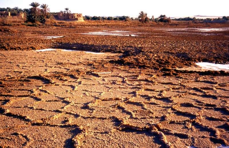Diercke weltatlas kartenansicht erde desertifikation for Definition von boden