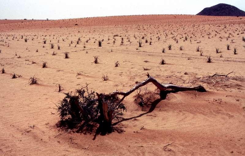 Diercke weltatlas kartenansicht el fasher sudan for Der die das boden