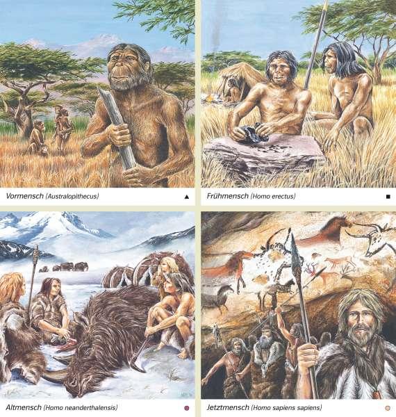 | Vormensch (Australopithecus)/Frühmensch (Homo erectus)/Altmensch (Homo neanderthalensis)/Jetztmensch (Homo sapiens sapiens) | Geschichte - Ur- und Frühgeschichte | Karte 192/1