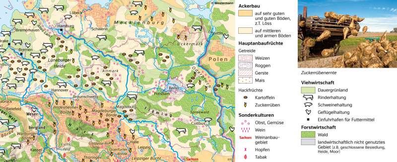   ThematischeKarte   Glienicker Brücke - Vom Bild zur Karte und Kartentypen   Karte 7/5