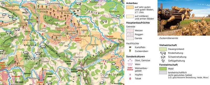 | ThematischeKarte | Greiz - Vom Bild zur Karte und Kartentypen | Karte 7/5
