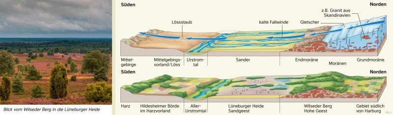 NorddeutschesTiefland | Eiszeitliche Prägung (Glaziale Serie) | Deutschland - Naturraum | Karte 37/3