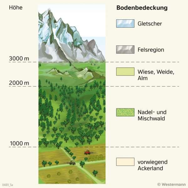 | Höhenstufender Alpen | Alpen - Tourismus und Umwelt | Karte 55/3