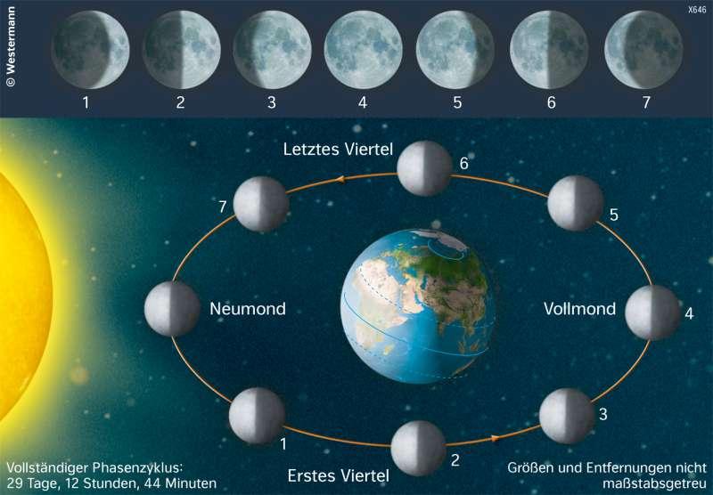 Weltall | Die Mondphasen | Die Erde im Weltall | Karte 190/5