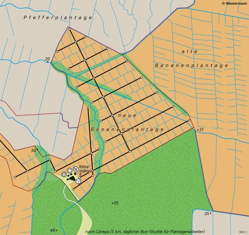 Carepa (GolfvonDarien/Kolumbien) | Bananenanbau | Südamerika - Landwirtschaft | Karte 161/4