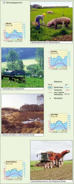 Klimadiagramme |  | Klima | Karte 8/3